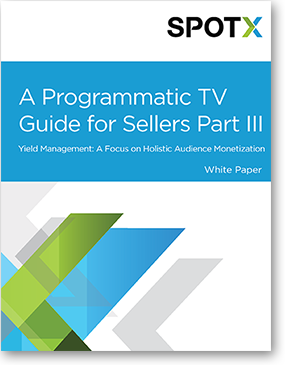 A Programmatic TV Guide for Sellers Part 3, programmatic TV advertising, programmatic advertising